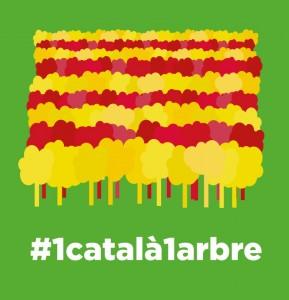 #1català1arbre